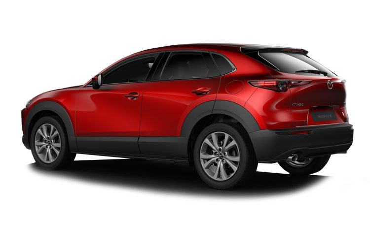 Mazda CX-30 SUV 2.0 e-SKYACTIV G MHEV 122PS GT Sport 5Dr Manual [Start Stop] back view